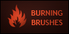 :iconburningbrushes: