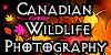 :iconcanadian-wildlife: