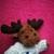 :iconcandy-moose:
