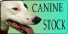 :iconcaninestock: