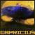 :iconcapricius: