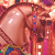 :iconcarousel-horses: