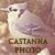 :iconcastanhaphoto: