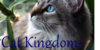 :iconcat-kingdom: