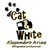 :iconcat-n-white: