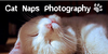 :iconcat-naps-photography: