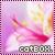 :iconcatbox17: