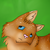 :iconcel-adopts: