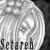 :iconcelestial-setareh: