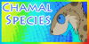 :iconchamal-species: