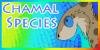 :iconchamal-species: