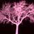 :iconcherrytree: