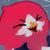 :iconchickhawk96: