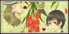 :iconchrysanthemum-tulip:
