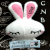 :iconcinnarabbit913: