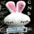 :iconcinnarabbit913: