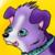 :iconcirkuitdog: