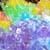 :iconcoloringbooks: