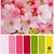 :iconcolorpallets: