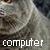 :iconcomputercat4plz: