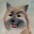 :iconcopperwolfcreations:
