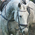 :iconcraziestdream: