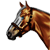 :iconcrimsonequestrian: