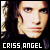 :iconcriss-angel-fans:
