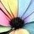 :iconcrystal-rainbow55: