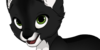 :iconcustom-cat-adopts: