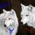 :iconcyberwolfspirit: