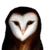 :icond-emon:
