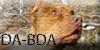 :iconda-bda: