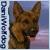 :icondaniwolfdog: