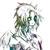 :icondark-jester666: