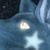 :icondark-wolfing: