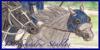 :icondarkshadow-stables: