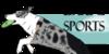 :icondarpg-sports: