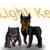 :iconday-light-kennels: