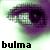 :icondbz-bulma:
