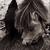 :icondemonwolfdog: