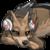 :icondholewolf: