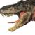 :icondinosaur-reptilex: