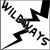 :icondjw-wildways: