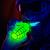 :icondoctor-blacklight: