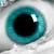 :icondr-vision: