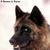 :icondreamwolfnoir: