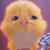 :iconemmiexpiggy: