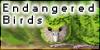 :iconendangered-birds: