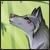 :iconestellouwolf: